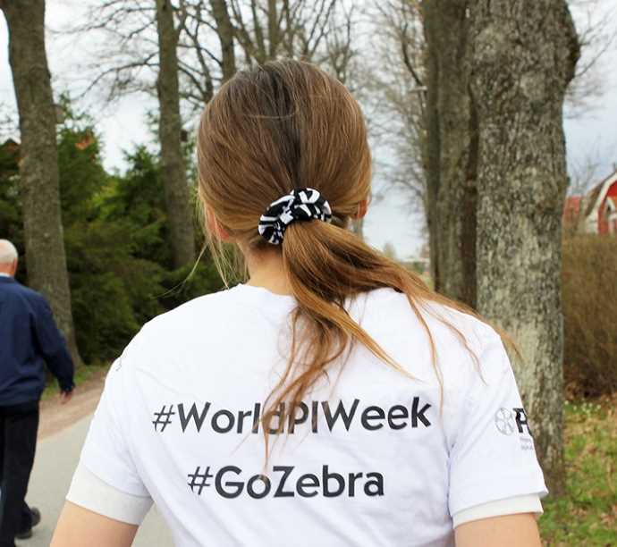 #GoZebra in Sweden